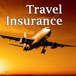 Small National Travel Insurance Service Provider