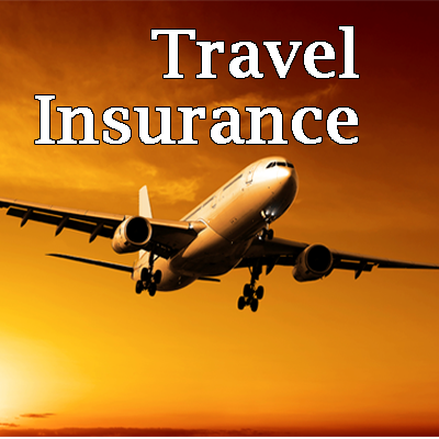 Small National Travel Insurance Service Provider